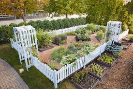 Our Top 5 Raised Bed Gardening Tips Better Homes Gardens