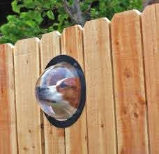 Pet Peek A Bubble Window For Your Dog To See Through The Wooden Fence