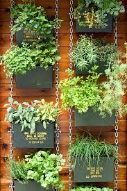 Hanging Wall Garden Lowgrav Me