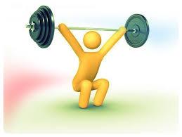 beginner program fitness essment