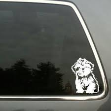 Shih Tzu Car Decal I Want Some Shih Tzu Dog Shih Tzu Shih Tzu Lover