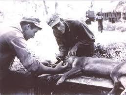 Ivan Hamilton and Lt. William Putney... - Ca de Bou & Pugs of the Rocking  Flatlands | Facebook