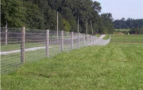 Jacksonville Fences Installed
