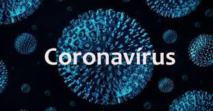 Resultado de imagem para casos coronavírus no Brasil
