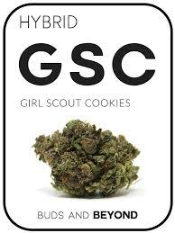 Girl Scout Cookies Strain - Buy Hybrid Girl Scout Cookies Online