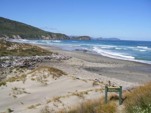 "Image result for Mason Bay, Isla Stewart surf"""