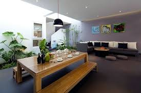put indoor plants as decoration on the