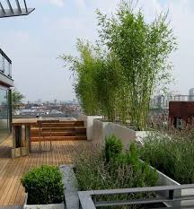 Small Garden Idea Use Bamboo For Privacy Roof Garden Rooftop Garden Rooftop Design