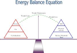 calculate your energy balance equation