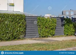 Modern Grey Wooden Garden Fence Stock Photo Image Of Design Private 136077190