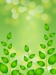 الربيع خلفية خضراء خلفيات الربيع أخضر طازج منعش صورة الخلفية