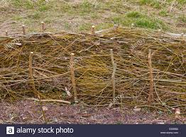Fence Panels Hurdles Thin Branches Withies Willow Stock Photo Alamy