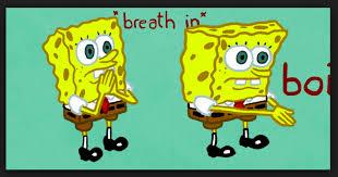 hd spongebob meme wallpaper hd wallpaper