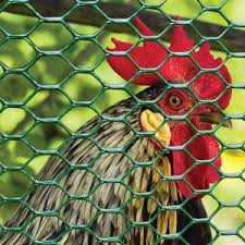 Poultry Fencing Fencing