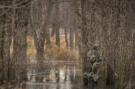 How Much Cover Does Your Duck Blind Need Realtree Camo