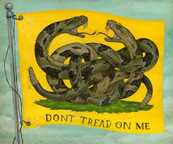 The Gadsden Flag Is A Symbol But Whose Who S Treading Now High Country News Know The West
