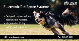 If Underground And Out Of Sight Dog Fences At The Best Prices Is What You Need Contact Dog Guard Today Our Work Is Quality Guarantee Dog Fence Pet Fence Pets
