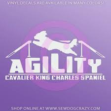 Jumping Agility Cavalier King Charles Spaniel Decal Sew Dog Crazy