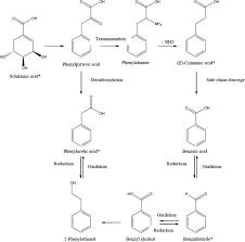 honey chemical position ility