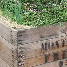 raised garden beds diy kits and