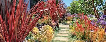 ca friendly design ideas roger s gardens