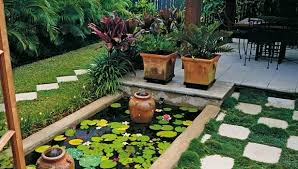 gardening tips for beginners 9 tips to