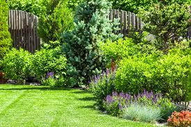 gardening shows on