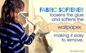 home remes for wallpaper removal