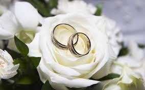 wedding rings hd free wallpapers white