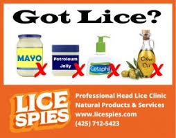 does smothering head lice in olive oil