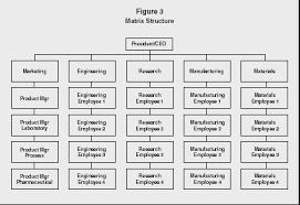 organizational structure strategy