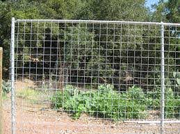 Arbor Fence Inc A Diamond Certified Company Wire Fence Fence Wire Trellis