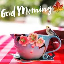good morning wallpapers top free good