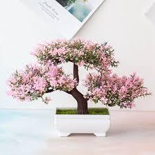 pine bonsai small tree pot