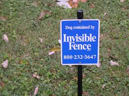 Protect Your Dog At The Lake Home With An Invisible Fence