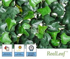 Artificial Ivy Green Leaf Mat Wall Panels By Natrahedge