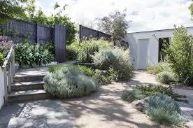 covet in a modern melbourne garden