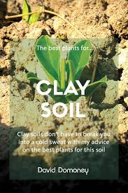 plants for clay soil