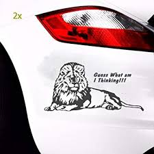 Amazon Com Boilipoint Car Window Decal Laptop Bumper Truck Lion Vinyl Decal Sticker Car Window Wall Bumper Laptop Big Cat Africa Animal Automotive