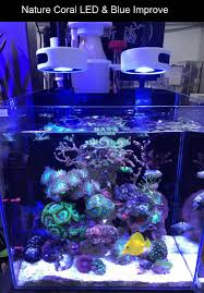 Nano Mini San Hô SPS LP Rạn San Hô Tảo Phát Triển Bổ Sung Đèn Led Bể Cá Cảnh  Biển Mặn Cá|aquarium fish tank led|ánh sáng hồ cáled aquarium xe tăng -