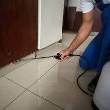 Avighna Pest Control Services, Worli - Residential Pest Control Services in  Mumbai - Justdial