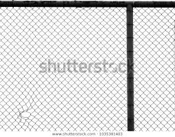 Decorative Wire Mesh Stock Photo Edit Now 1035381403
