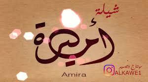 شيلة أميره 2017 شيله بأسم اميره Youtube