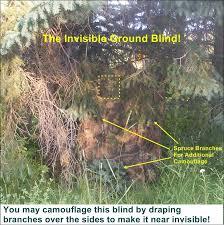 free crossbow deer hunting blind plans