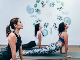 the yoga collective sport and fitness