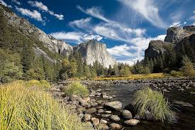 Yosemite National Park Mountain Wallpaper Wall Mural Self Adhesive Contemporary Wall Decals By Magic Murals Llc