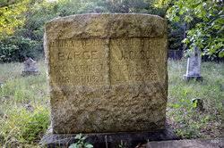 Amanda Iva Stevens Barge (1847-1920) - Find A Grave Memorial