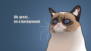 grumpy cat wallpapers hd for desktop