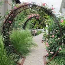 garden trellis ideas that are