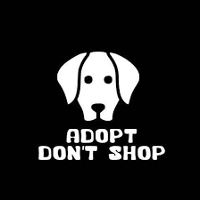 Adopt Don T Shop Dog Decal Sticker Car Decal Etsy